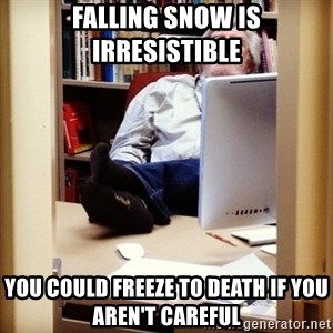 sleepy professor - falling snow is irresistible  you could freeze to death if you aren't careful