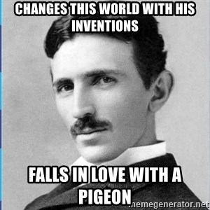 Nikola tesla - changes this world with his inventions falls in love with a pigeon