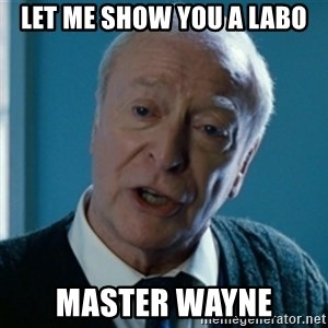 Tired of your shit Master Wayne - Let me SHOW YOU A LABO MASTER WAYNE