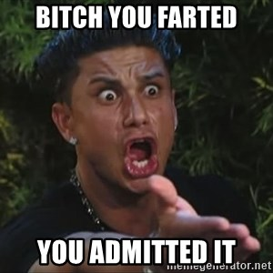 Pauly D - bitch you farted you admitted it