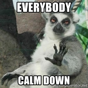 Not Today Lemur - Everybody  Calm Down