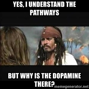 But why is the rum gone - Yes, I understand the pathways But why is the Dopamine there?