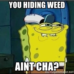 Spongebob Face - You hiding weed  Aint cha?