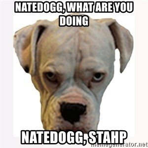stahp guise - Natedogg, what are you doing natedogg, stahp