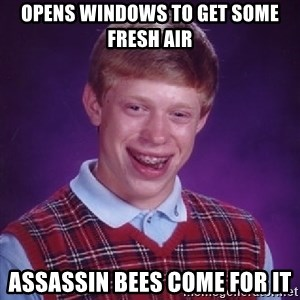Bad Luck Brian - OPENS WINDOWS TO GET SOME FRESH AIR ASSASSIN BEES COME FOR IT