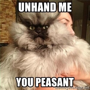 Colonel Meow - UNHAND ME YOU PEASANT