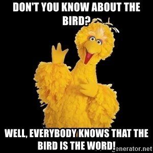 BIG BIRD meme - Don't you know about the bird? Well, everybody knows that the bird is the word!