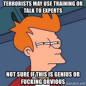Futurama Fry - terrorists may use training or talk to experts Not sure if this is genius or fucking obvious