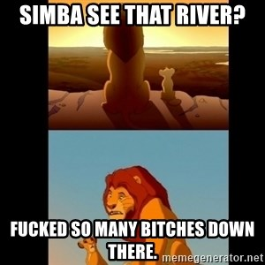 Lion King Shadowy Place - Simba see that river? FUCKED SO MANY BITCHES DOWN THERE.