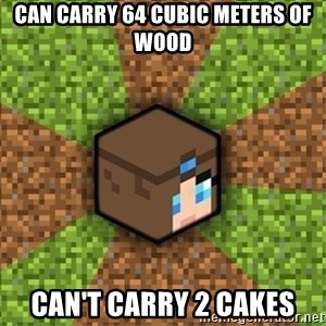 Minecraft Logic - Can carRy 64 cubic meters Of wood CAn't carry 2 cakes