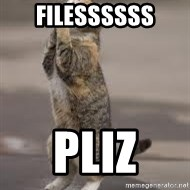 Begging Cat - FILESSSSSS PLIZ
