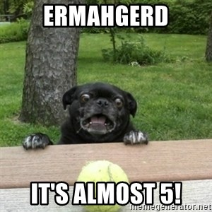 Ermahgerd Pug - Ermahgerd It's almost 5!