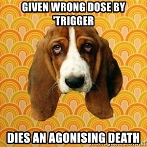 SAD DOG - given wrong dose by 'trigger dies an agonising death