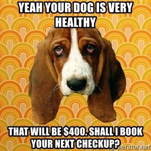 SAD DOG - yeah your dog is very healthy that will be $400. shall i book your next checkup?