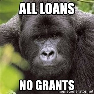 Grad Student Gorilla - ALL LOANS NO GRANTS