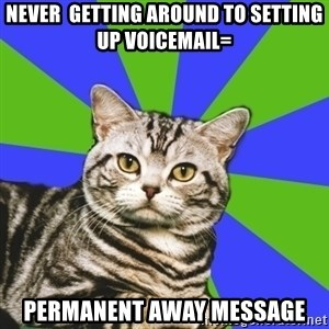 Introvert Cat - never  getting around to setting up voicemail= permanent away message