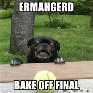 Ermahgerd Pug - ERMAHGERD Bake off final