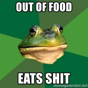 Foul Bachelor Frog - out of food eats shit