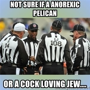 NFL Ref Meeting - NOT SURE IF A ANOREXIC PELICAN OR A COCK LOVING JEW....