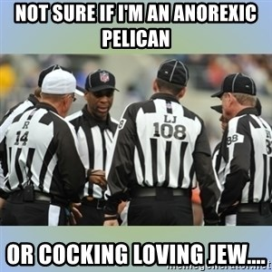 NFL Ref Meeting - NOT SURE IF I'M AN ANOREXIC PELICAN  OR COCKING LOVING JEW....