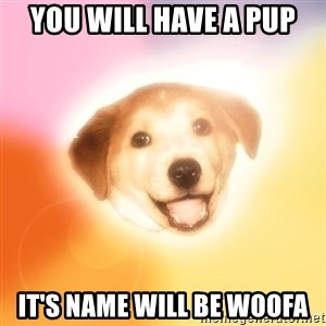 Holy Advice Dog - YOU WILL HAVE A PUP IT'S NAME WILL BE WOOFA