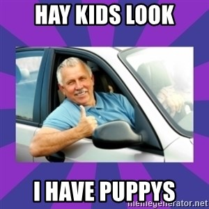 Perfect Driver - HAy Kids look I have Puppys