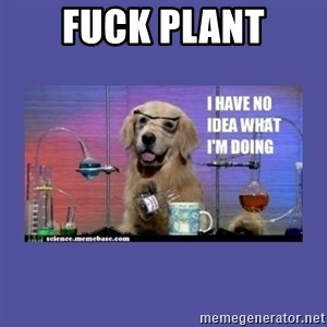 I don't know what i'm doing! dog - fuck plant