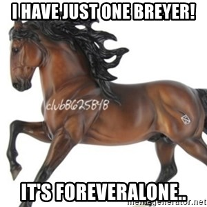 Typical horse model collector - I have just one breyer! it's foreveralone..