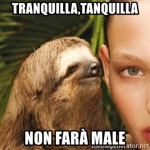 The Rape Sloth - Tranquilla,tanquilla non farà male