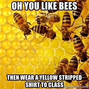 Honeybees - oh you like bees then wear a yellow stripped shirt to class