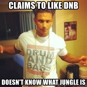 Drum And Bass Guy - CLAIMS TO LIKE DNB DOESN'T KNOW WHAT JUNGLE IS