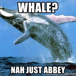 whaleeee - WHALE? NAH JUST ABBEY