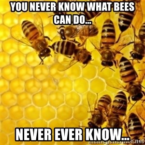 Honeybees - YOU NEVER KNOW WHAT BEES CAN DO... NEVER EVER KNOW...