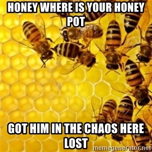 Honeybees - Honey where is your honey pot Got him in the chaos here lost