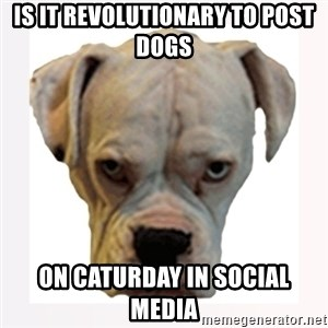 stahp guise - Is it revolutionary to post dogs on Caturday in social media