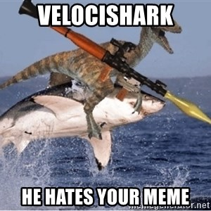 raptor shark - velocishark he hates your meme