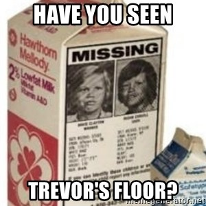 Big Milk Carton - Have you seen trevor's floor?