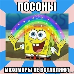 Spongebob Imagination - посоны мухоморы не вставляют