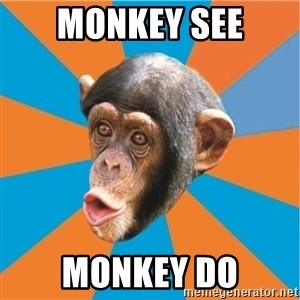 Stupid Monkey - MONKEY SEE MONKEY DO