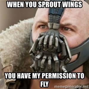 Bane - when you sprout wings you have my permission to fly