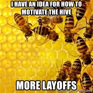 Honeybees - i have an idea for how to motivate the hive more layoffs