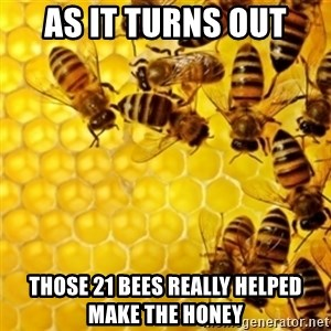 Honeybees - as it turns out those 21 bees really helped make the honey
