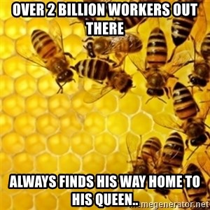 Honeybees - OVER 2 BILLION WORKERS OUT THERE ALWAYS FINDS HIS WAY HOME TO HIS QUEEN..