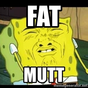 Spongebob Sniff  - FAT MUTT