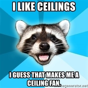 Lame Pun Coon - I like ceilings I guess that makes me a ceiling fan.