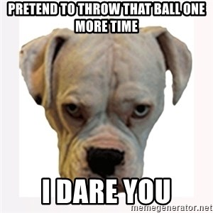 stahp guise - pretend to throw that ball one more time i dare you