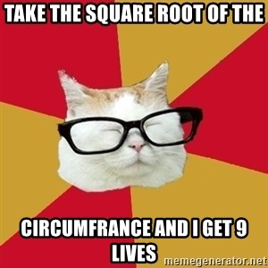 Intelligent Cat - TAKE THE SQUARE ROOT OF THE CIRCUMFRANCE AND I GET 9 LIVES