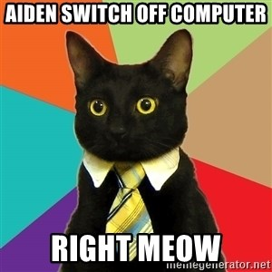 Business Cat - Aiden switch off computer right meow