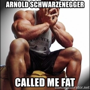 Fit Guy Problems - ARNOLD SCHWARZENEGGER CALLED ME FAT