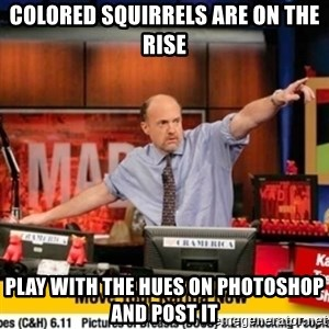 Karma Cramer - colored Squirrels are on the rise play with the hues on photoshop and post it